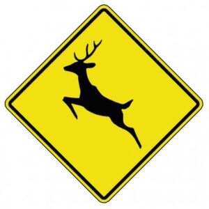 Image result for deer crossing